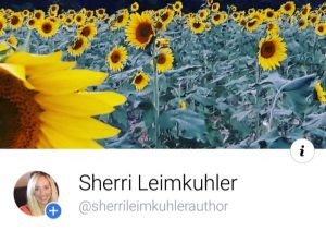 website FB author page