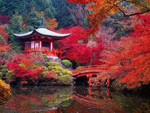 website Kyoto